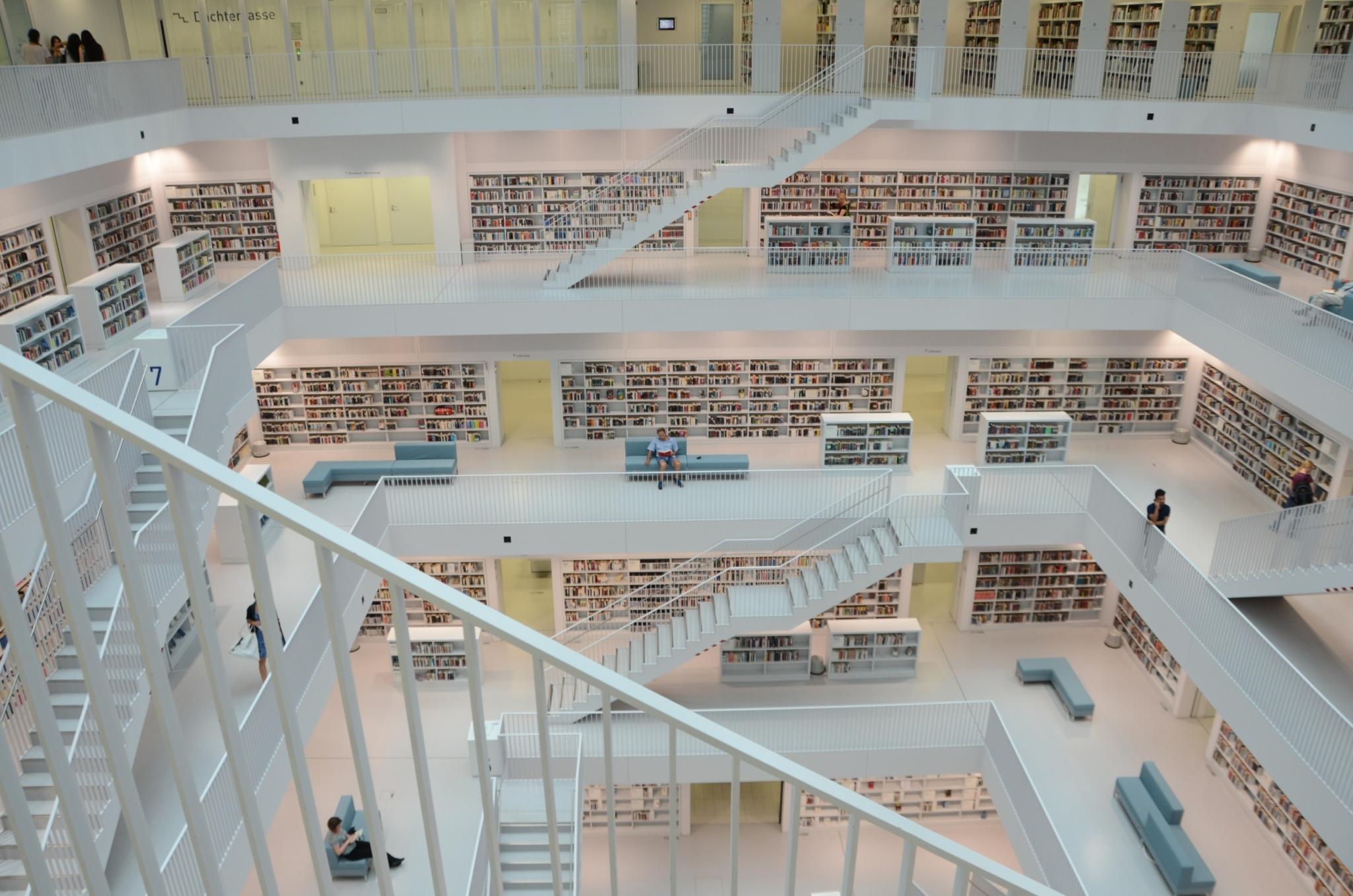Las bibliotecas